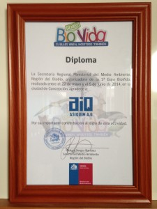 Diploma Seremi a Asiquim 8va Region